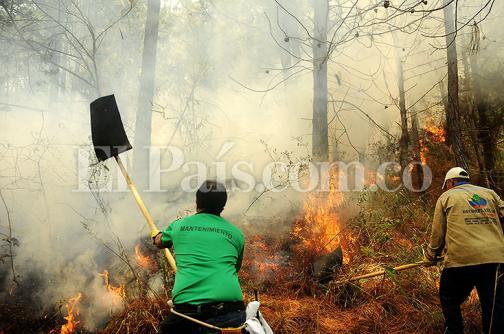 El voraz incendio que intentan apagar los bomberos en Pichindé