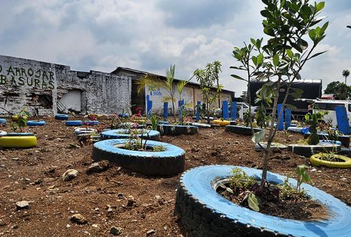 Noticias de cali valle y colombia periodico diario el pais for Barrio el jardin cali colombia