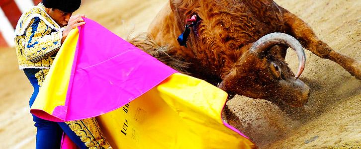 Toros en La Feria de Cali 2013