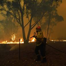 Video: la tragedia ambiental que los incendios forestales causaron en Australia