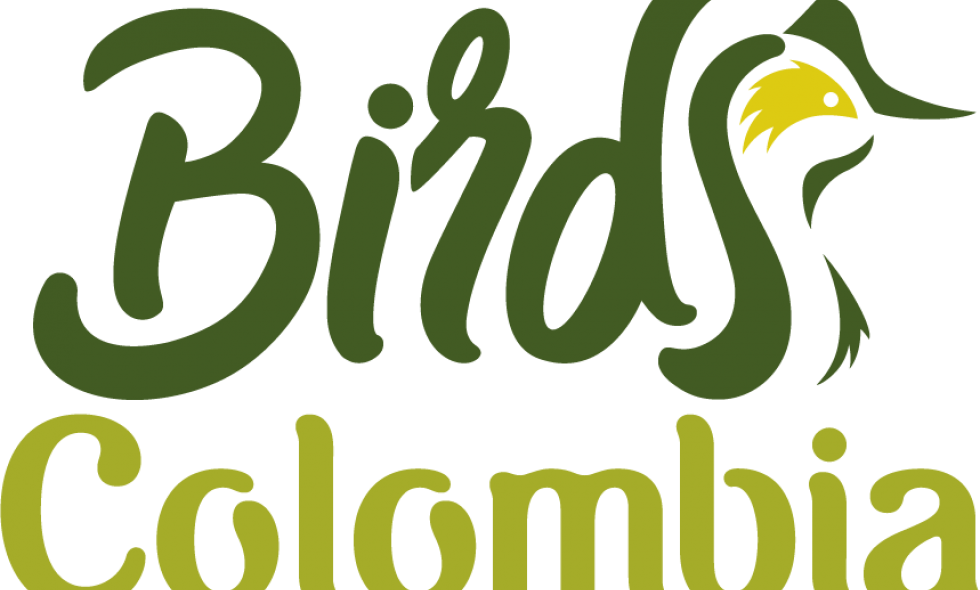 Logo birds colombia